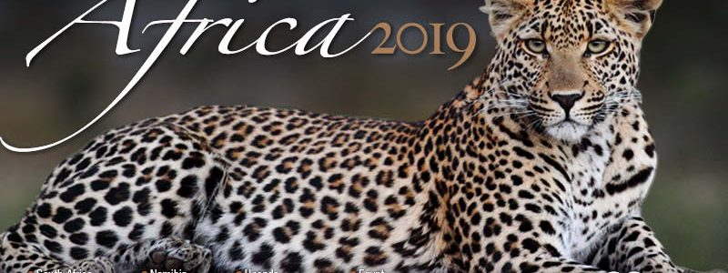 2019 Africa brochure – Now Available !!