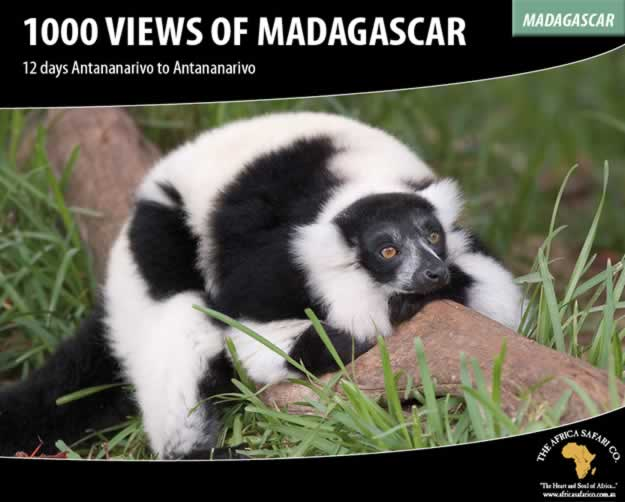 1000 Views of Madagascar