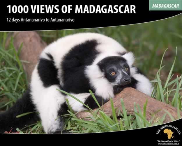 1000 Views of Madagascar