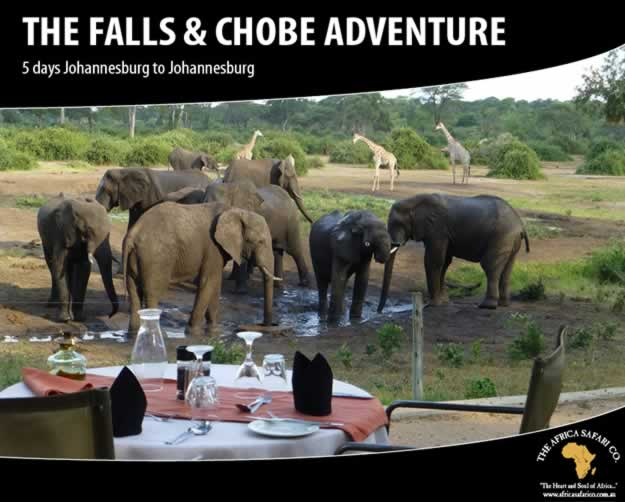 The Falls and Chobe Adventure