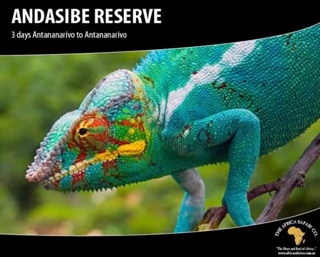 Andasibe Reserve