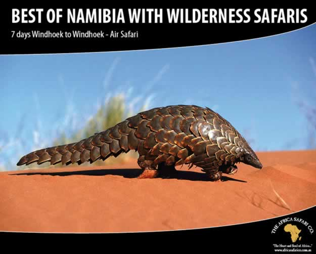 The Best of Namibia with Wilderness Safaris