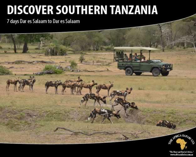 Discover Southern Tanzania
