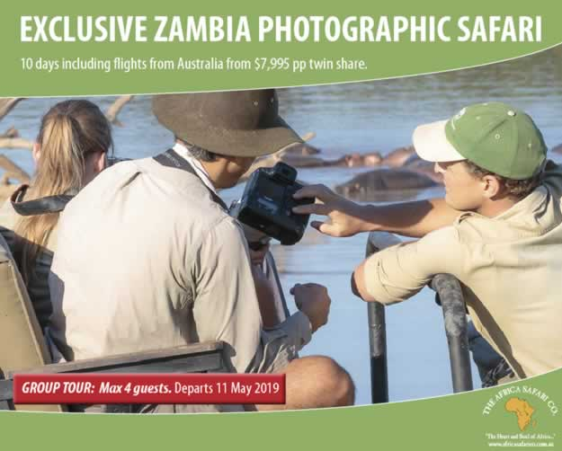 Exclusive Zambia Photographic Safari