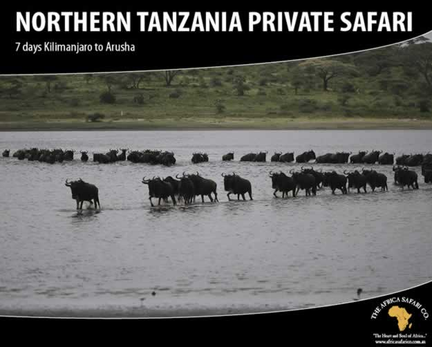 Northern Tanzania Private Safari