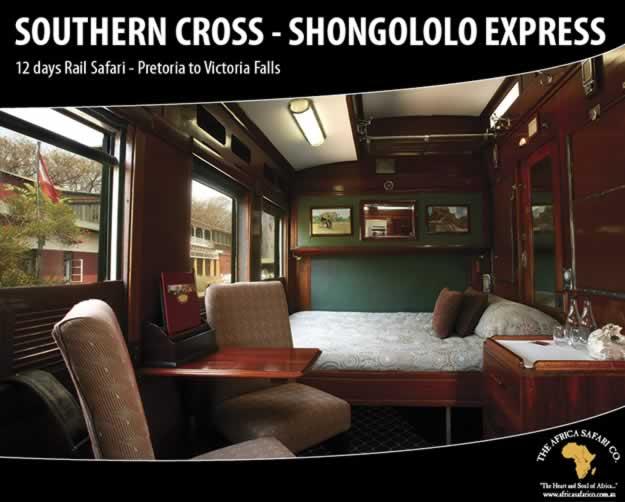 Shongololo - Southern Cross