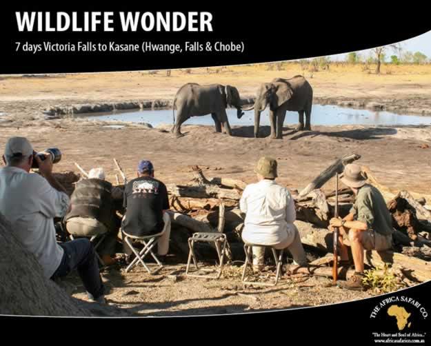 Wildlife Wonder - Hwange, Falls & Chobe
