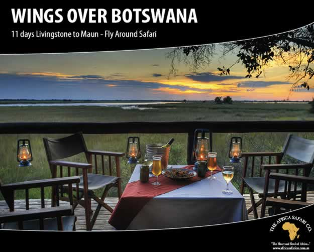 Wings Over Botswana