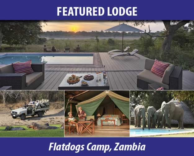 Flatdogs Camp, Zambia