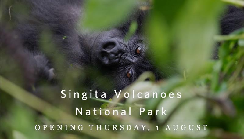 Singita Volcanoes National Park