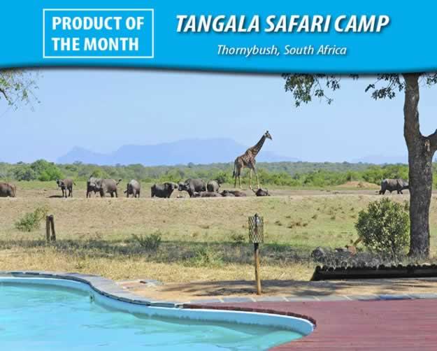 Tangala Safari Camp