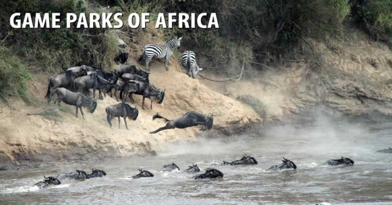 Game Parks of Africa