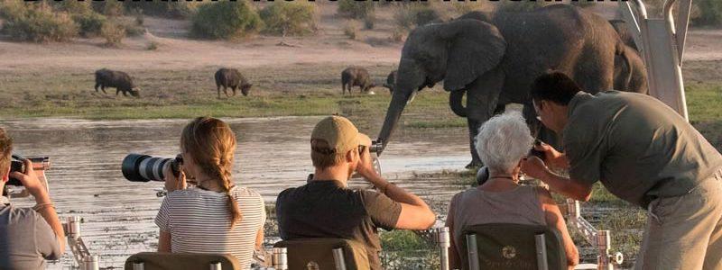 Botswana Photographic Safari