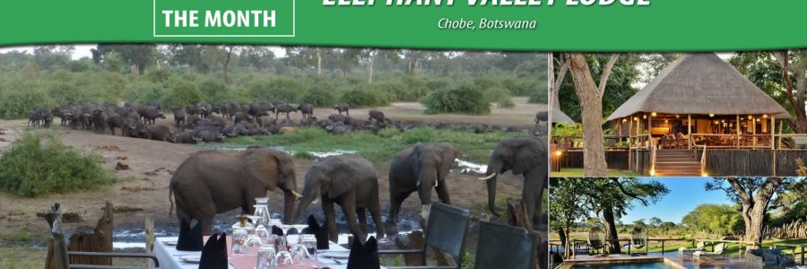 POM – Elephant Valley Lodge