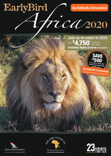 2019 Package Deals