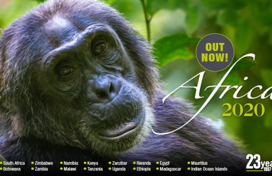 2020 Africa brochure – Now Available !!