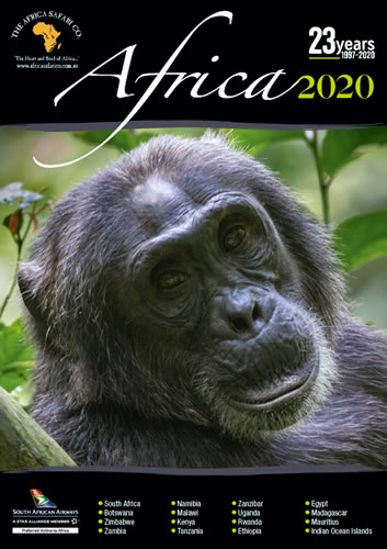 2020 Africa Cover