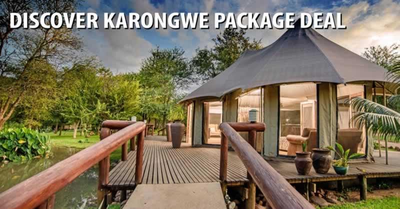 Discover Karongwe