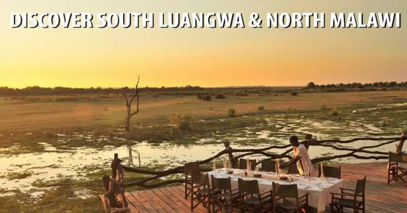 Discover South Luangwa & North Malawi