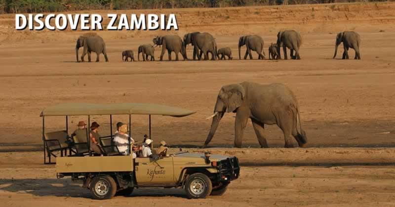 Discover Zambia