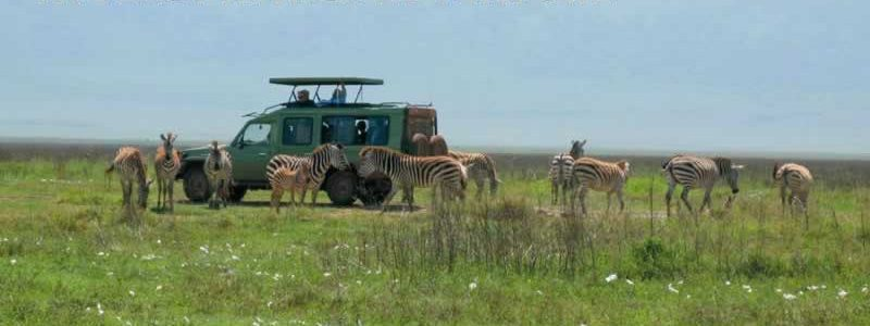 The East Africa Adventure