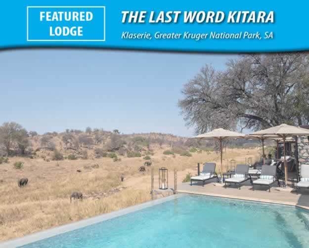 The Last Word Kitara