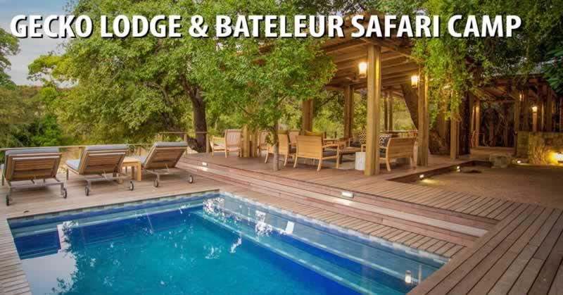 Gecko Lodge & Bateleur Safari Camp