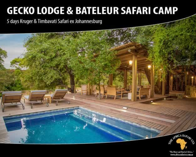 Gecko Lodge & Bateleur Safari Camp