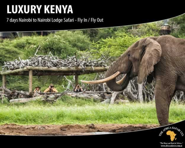 Luxury Kenya