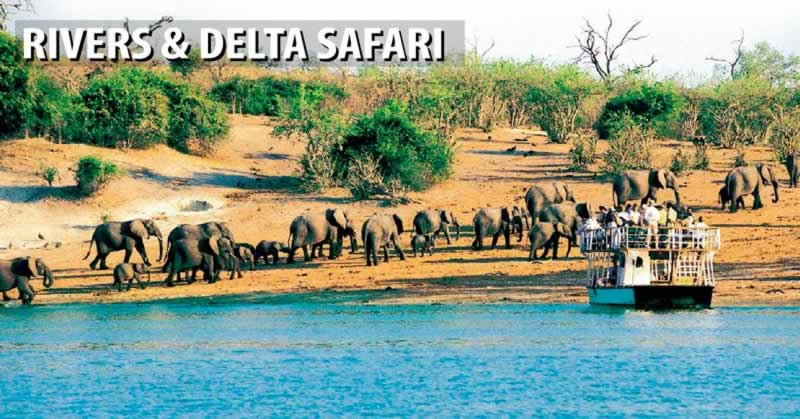 Rivers & Delta Safari