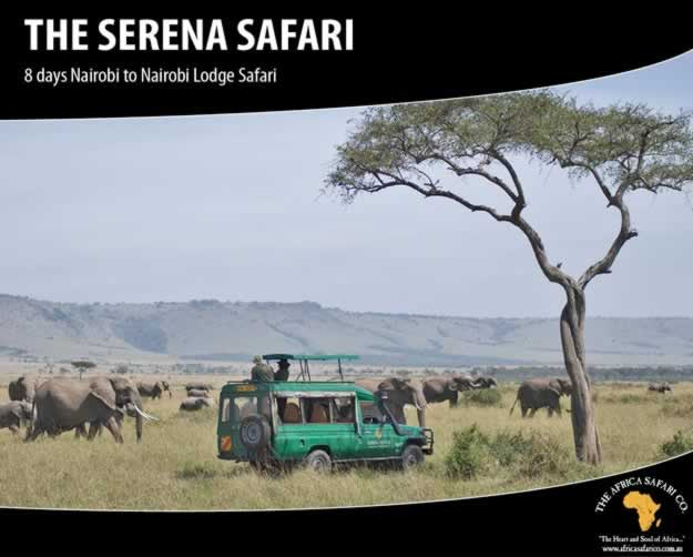 The Serena Safari