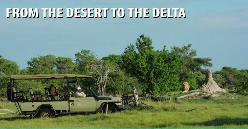From the Desert to the Delta