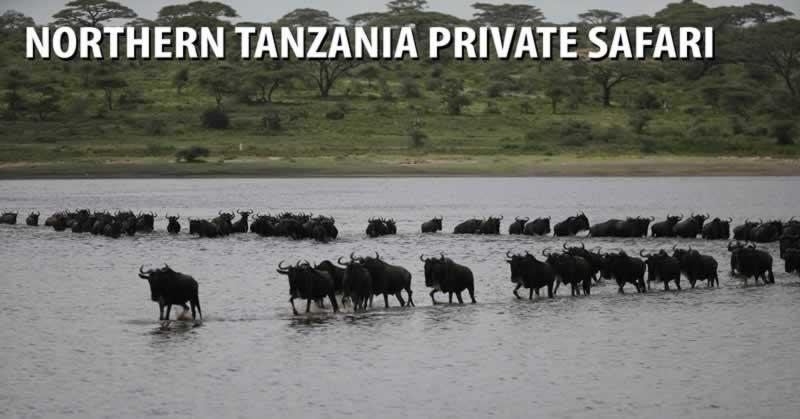 Northern Tanzania Private Safari