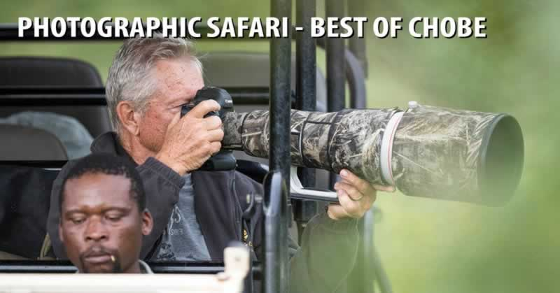Photographic Safari - Best of Chobe