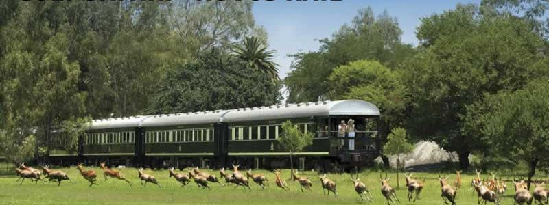 Rovos Rail Golf Safari