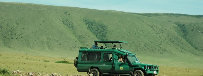 Ngorongoro Crater Game Drive
