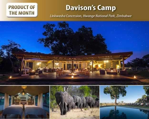 Davison's