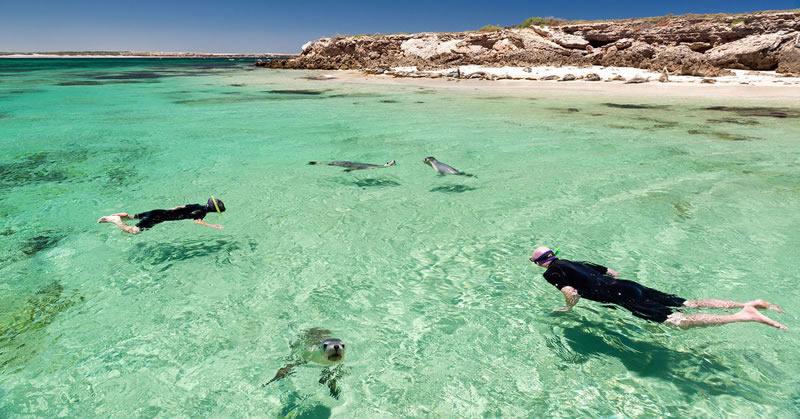 Eyre Peninsula and Flinders Ranges Adventure