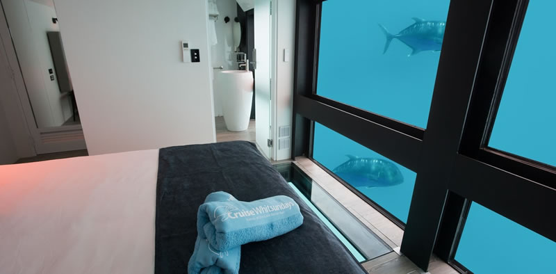 Reef suite Experience