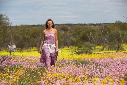 Wildflowers, Coalseam Conservation Park<br>Credit: Tourism Western Australia