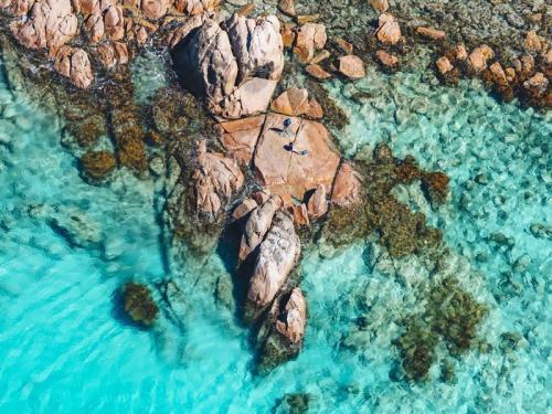 Point Picquet, near Dunsborough<br>Credit: Tourism Western Australia & @saltywings