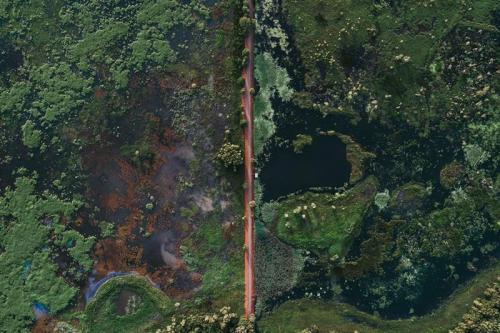 Fogg Dam Conservation Reserve Image Credit: Tourism NT/Jarrad Seng