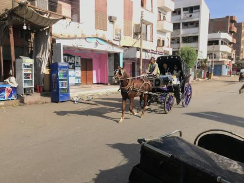 Horse cart at Edfu