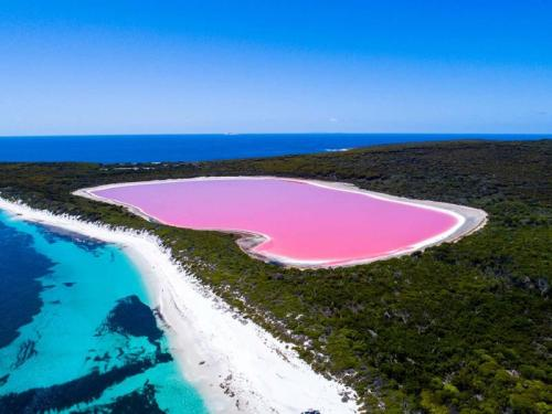 Pink Lake Hillier Middle Island