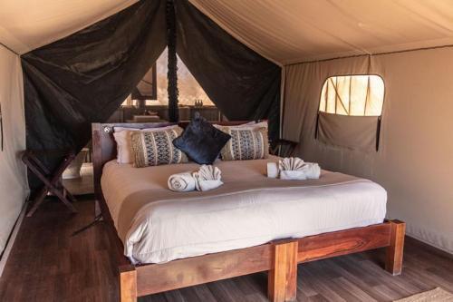 SS-Camp-Tent interior