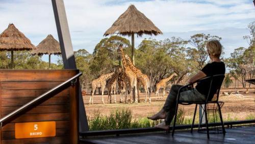 Zoofari Lodge - Wake up to the wild